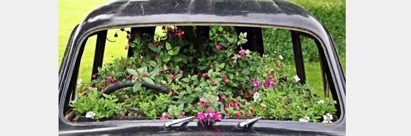 Car Maintenance Tip